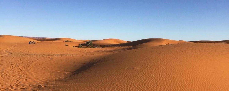 Σαχάρα: Η ανεπανάληπτη…